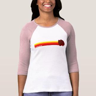 Pomeranian With Stripes T-Shirt