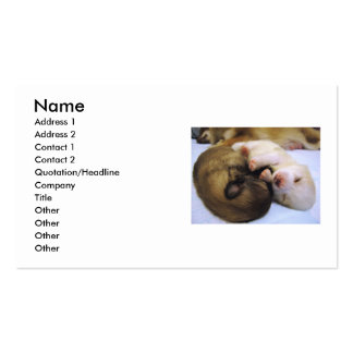 Pomeranians Double-Sided Standard Business Cards (Pack Of 100)