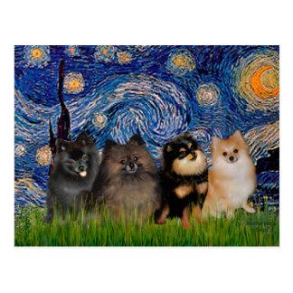 Pomeranians (four) - Starry Night Postcard