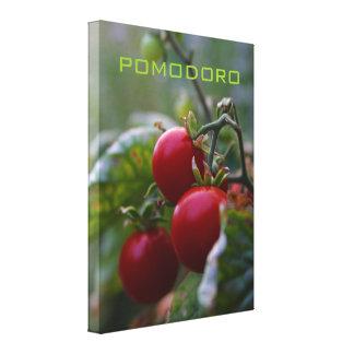 Pomodoro Italian Tomato Macro Photo Wall Art Canvas Print