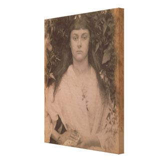 Pomona, 1872 (foto de b/w) impresión en lona estirada