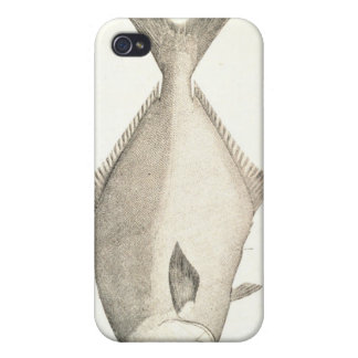 Pompano Cases For iPhone 4