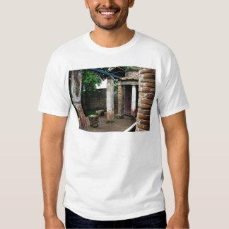 Pompei - Ruins of a Villa T-Shirt