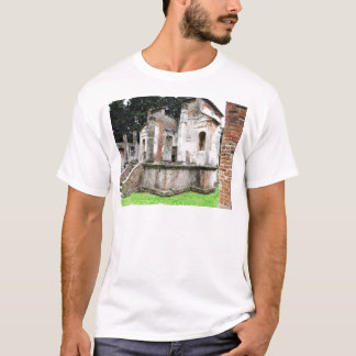 Pompeii - Close-up of an ancient Pagan Temple T-Shirt