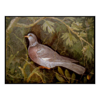 POMPEII COLLECTION / DOVE IN THE GARDEN POSTER