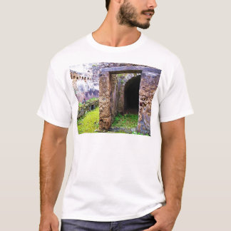 Pompeii - Entrance Door to a Ruins of a House T-Shirt