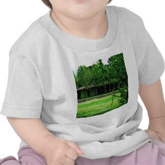Pompeii - Greenspace with ruins Tee Shirts