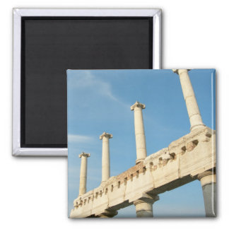 Pompeii Italy Ancient Roman City photograph 2 Inch Square Magnet