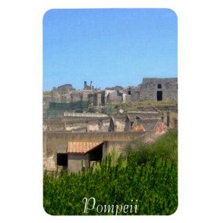 Pompeii Italy Magnet