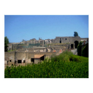 Pompeii Italy Poster