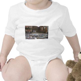 Pompeii - Macellum or Marketplace Tee Shirts
