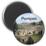 Pompeii manget refrigerator magnet