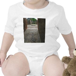Pompeii Mosaic Floor Tee Shirts