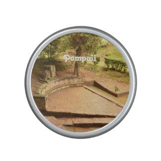 Pompeii Speaker