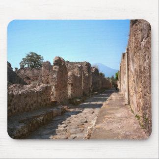 Pompeya, calle con altos pavimentos tapetes de raton