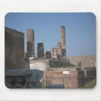 Pompeya, columnas 1 tapetes de ratones