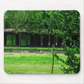 Pompeya - Greenspace con ruinas Alfombrillas De Raton