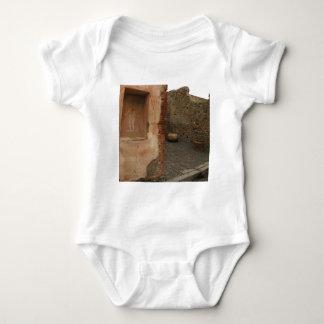 Pompeya - lararium de la pared - pintura en lugar remeras