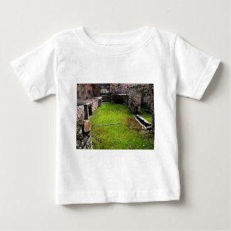 Pompeya - ruinas de una casa polera