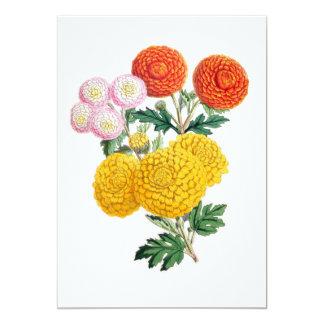 Pompon Chrysanthemums Card