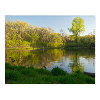 Pond and Lush Forest of Battle Creek Park Postcard