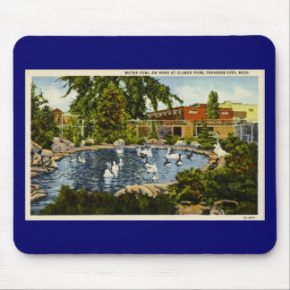 Pond at Clinch Park Traverse City, Michigan Mouse Pad