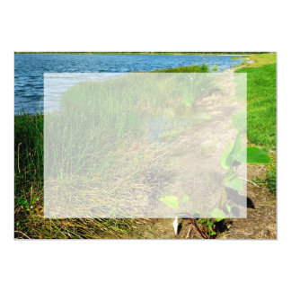 Pond bank with pond plants card
