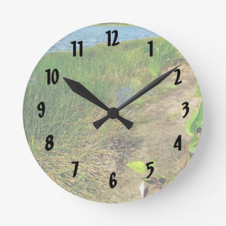 Pond bank with pond plants round clock