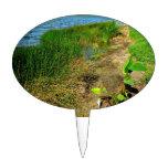 Pond bank with pond plants oval cake picks