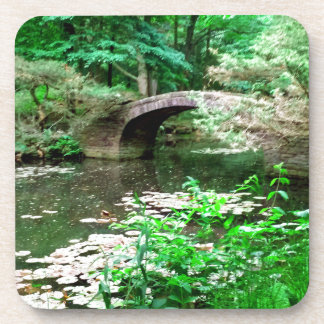 Pond Bridge Coaster