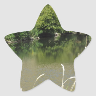 Pond by the Road Star Sticker