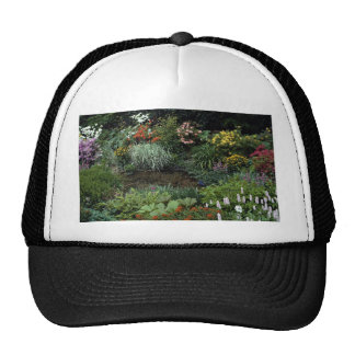 Pond, early summer, bog garden mesh hats