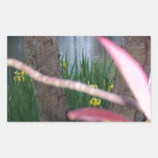 Pond Flora Rectangular Sticker