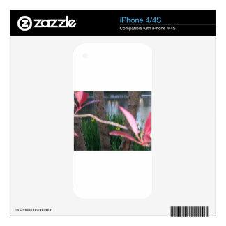 Pond Flora iPhone 4 Skin