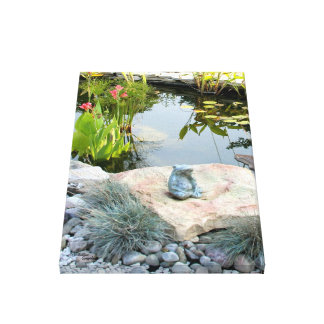 Pond frog Gloss Stretched Canvas Print