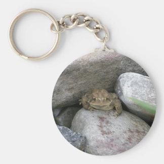 Pond Frog Key Chain