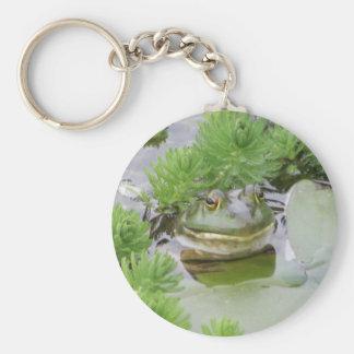 Pond Frog Key Chains