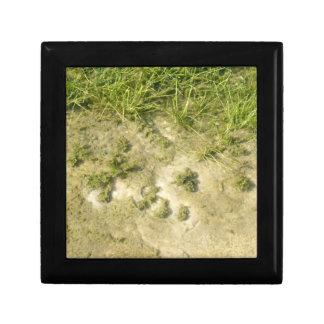 Pond grass and sand background keepsake boxes