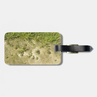 Pond grass and sand background luggage tag