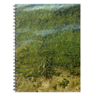 Pond grass underwater image notebook