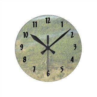 Pond grass underwater image round clock