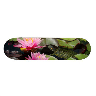 Pond Habitat Turtle Skateboard