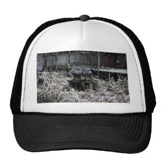 Pond Trucker Hat
