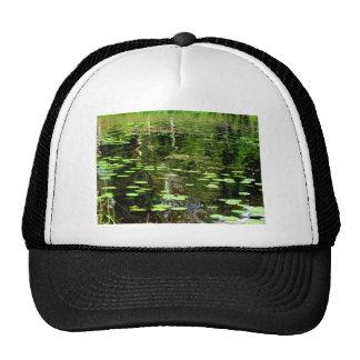 Pond Hat