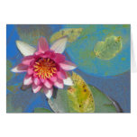 Pond Lily, Greeting Card