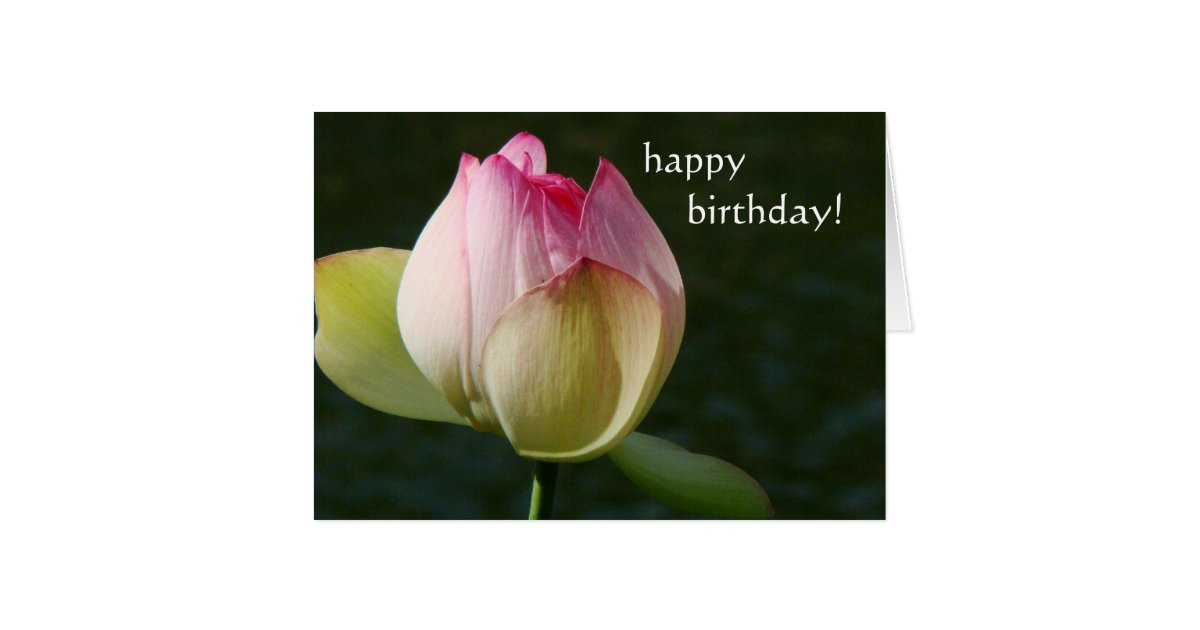 Pond Lotus Flower Birthday Card | Zazzle.com