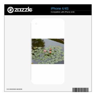 pond lotus flower leave iPhone 4S skin