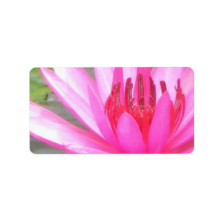 Pond Lotus Tranquility Namaste Blank Address Address Label