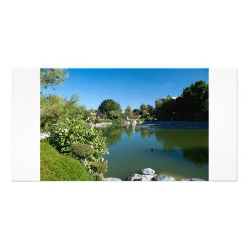 Pond photocard custom photo card