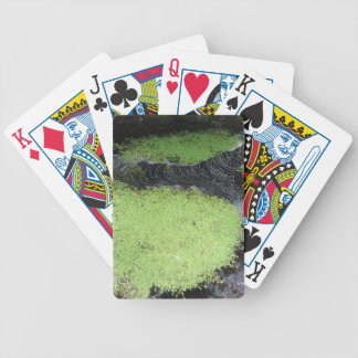 Pond Playing Cards